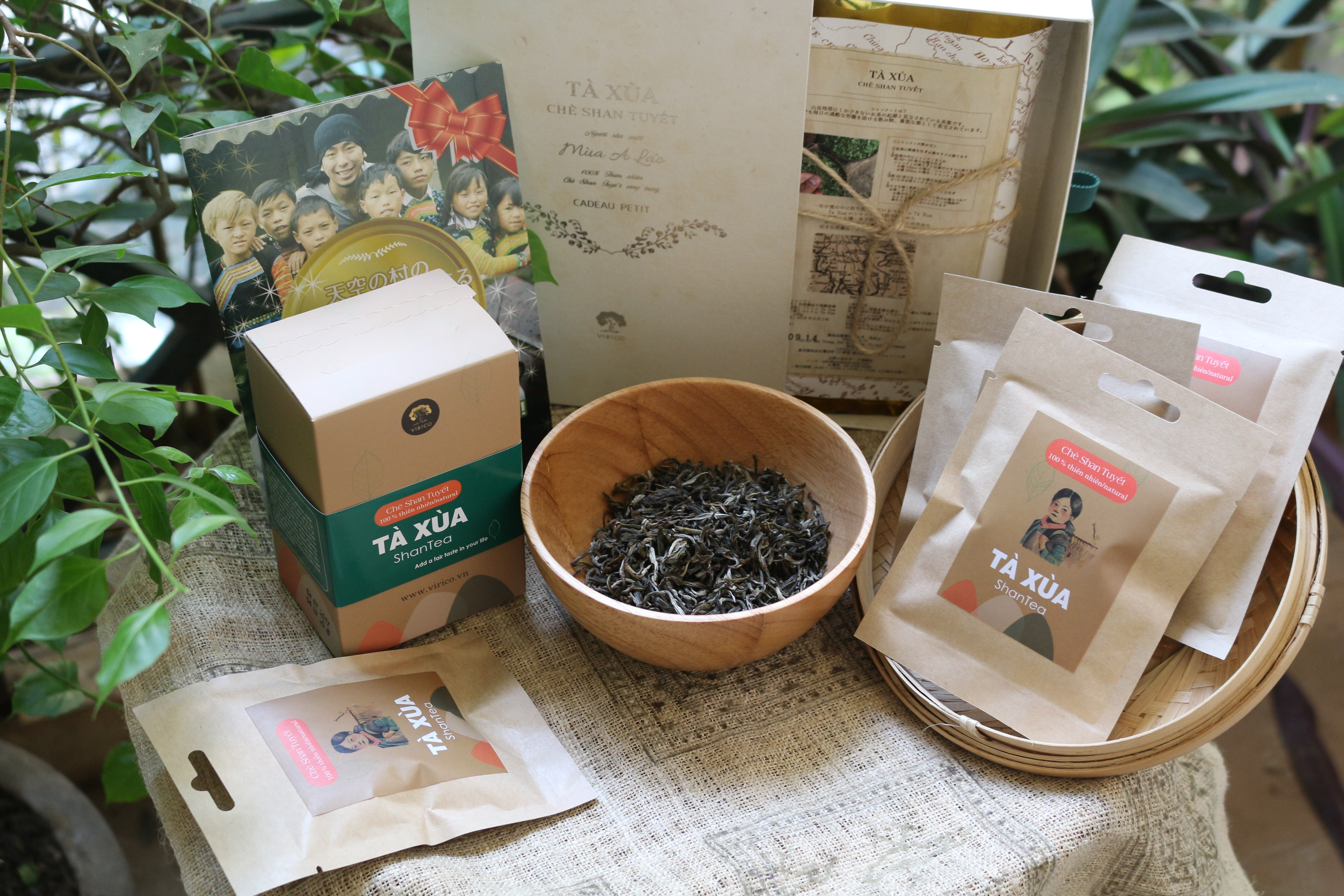 Ta Xua Shan tea is going to be participated in the World Green Tea Contest