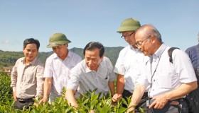 Doanh nghiệp Nhật Bản khảo sát 1 số mô hình nông nghiệp Nghệ An