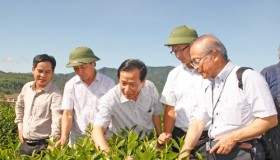 Survey of Japanese enterprises on some agricultural models in Nghe An